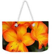 Tropical Delight Weekender Tote Bag