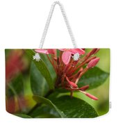 Tropical Flowers In Singapore Weekender Tote Bag