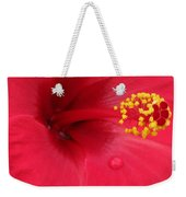 Tropical Hibiscus - Antigua Wind 01 Weekender Tote Bag
