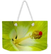 Tropical Hibiscus - Bonaire Wind 03a Weekender Tote Bag