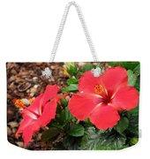 Tropical Hibiscus - Starry Wind 01 Weekender Tote Bag