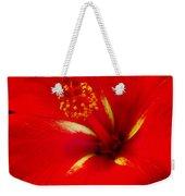 Tropical Hibiscus - Starry Wind 02a Weekender Tote Bag