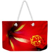 Tropical Hibiscus - Starry Wind 04a Weekender Tote Bag