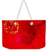 Tropical Hibiscus - Trinidad Wind 01a Weekender Tote Bag