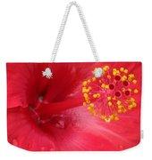 Tropical Hibiscus - Trinidad Wind 02 Weekender Tote Bag