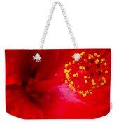 Tropical Hibiscus - Trinidad Wind 02a Weekender Tote Bag