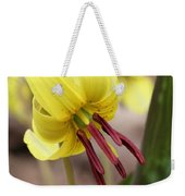 Trout Lily Or Dog-toothed Violet Weekender Tote Bag
