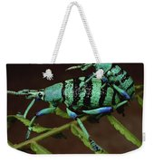 True Weevil Couple Mating Papua New Weekender Tote Bag