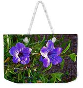 Trumpet Vine In Apache Junction-arizona   Weekender Tote Bag