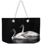 Trumpeter Swan Cygnets Weekender Tote Bag