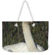 Trumpeter Swan On Nest With Chicks Weekender Tote Bag