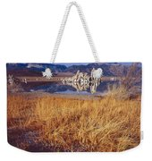 Tufa And Frozen Grass-h Weekender Tote Bag