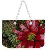 Tufted Airplant And Spanish Moss Weekender Tote Bag