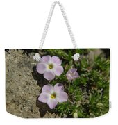 Tufted Phlox Weekender Tote Bag