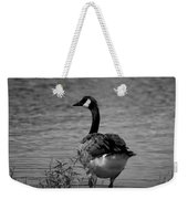 Tufted Tail Feathers Weekender Tote Bag