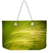 Tufts Of Ornamental Grass Weekender Tote Bag