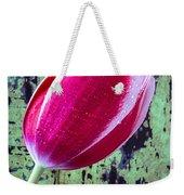 Tulip Against Green Wall Weekender Tote Bag