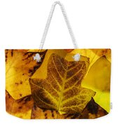 Tulip Tree Leaves In Autumn Weekender Tote Bag