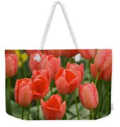 Tulips 33 Weekender Tote Bag