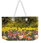 Tulips At Dallas Arboretum V32 Weekender Tote Bag