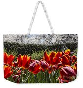 Tulips At Dallas Arboretum V41 Weekender Tote Bag