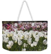Tulips At Dallas Arboretum V52 Weekender Tote Bag