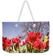 Tulips At Dallas Arboretum V62 Weekender Tote Bag