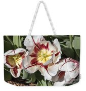 Tulips At Dallas Arboretum V91 Weekender Tote Bag