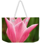 Tulips At Thanksgiving Point - 17 Weekender Tote Bag