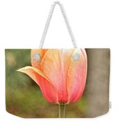 Tulips At Thanksgiving Point - 18 Weekender Tote Bag