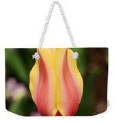 Tulips At Thanksgiving Point - 23 Weekender Tote Bag