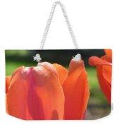 Tulips Backlit 2 Weekender Tote Bag