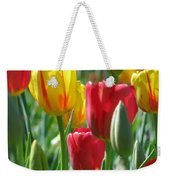Tulips - Field With Love 22 Weekender Tote Bag