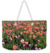 Tulips - Field With Love 56 Weekender Tote Bag