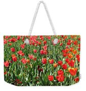 Tulips - Field With Love 61 Weekender Tote Bag