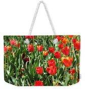 Tulips - Field With Love 62 Weekender Tote Bag