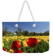 Tulips Galore  Weekender Tote Bag