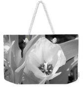 Tulips - Infrared 33 Weekender Tote Bag