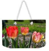 Tulips Red Pink Tulip Flowers Art Prints Weekender Tote Bag