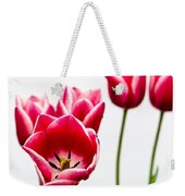 Tulips Say Hello Weekender Tote Bag