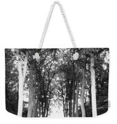 Tunnel Of Trees Weekender Tote Bag