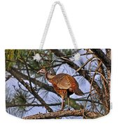 Turkey In A Tree Weekender Tote Bag by Al Powell Photography USA