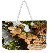 Turkey Tail Bracket Fungi Weekender Tote Bag