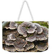 Turkey Tail Bracket Fungi -  Trametes Versicolor Weekender Tote Bag