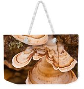 Turkey Tail Fungus 5 Weekender Tote Bag