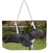Turkey Vulture Cathartes Aura Weekender Tote Bag