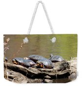 Turtles Weekender Tote Bag