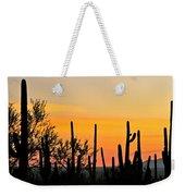 Twilight After Sunset Sonoran Desert Weekender Tote Bag