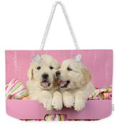 Twin White Labs In Pink Basket Weekender Tote Bag by Greg Cuddiford