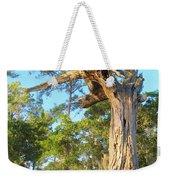 Twirling Tree Path Weekender Tote Bag